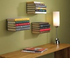 Das unsichtbares Bücherregal