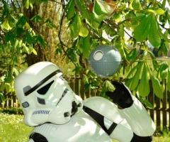 Star Wars Todesstern Vogelhaus